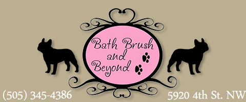 Bath brush and beyond pet spa your pet says a lot about you say something beautiful solutioingenieria Choice Image